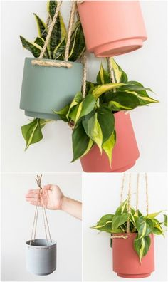 garden planters 20 Cheap And Easy DIY Hanging Planters That Add Beautiful Style To Any Room - DIY amp; Crafts Hanging Planters 20 Cheap And Easy DIY Hanging Planters That Add Beautiful Style To Any Room Diy Concrete Planters, Indoor Planters, Diy Planters, Planter Pots, Planters Flowers, Garden Planters, Diy Flowers, Plants Indoor, Edible Flowers