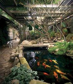 Japanese Koi Ponds For Your Garden Gotta put up my canopy tent or netting over the pond to cut down on algae. Maybe erect a pergola later.Gotta put up my canopy tent or netting over the pond to cut down on algae. Maybe erect a pergola later. Indoor Pond, Indoor Water Fountains, Outdoor Fountains, Indoor Bamboo, Outdoor Ponds, Garden Fountains, Koi Pond Design, Landscape Design, Ponds Backyard