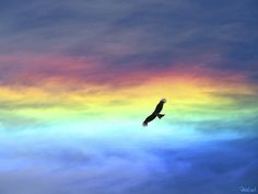 Iridescent Clouds 〜彩雲〜 by ★☆Pixie Led☆★ Rainbow Sky, Love Rainbow, Over The Rainbow, Rainbow Colors, All Nature, Amazing Nature, Beautiful Sky, Beautiful World, Rainbow Aesthetic