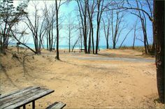 #Sandbanks Provincial Park Ontario Canada Ontario Parks, Great Lakes, Trips, Canada, Camping, Outdoor Decor, Summer, Vacation, Viajes