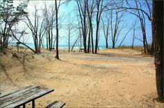 #Sandbanks Provincial Park Ontario Canada Ontario Parks, Great Lakes, Good Old, Trips, Canada, Camping, Outdoor Decor, Summer, Image
