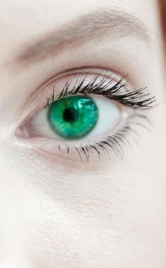 Buy Coloured Contact Lenses Direct from the UK Hazel Eye Makeup, Korean Eye Makeup, Hazel Eyes, Smokey Eye Makeup, Gorgeous Eyes, Pretty Eyes, Cool Eyes, Green Contacts Lenses, Green Colored Contacts
