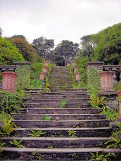 Bantry House, Cork, Ireland. I have walked those very steps.