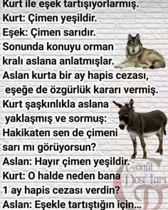 Kıssadan Hisse;  #spor #sağlık #sağlıklıyaşam #saglikliyasam #fit #fitness #kardiyo #kiloverme #zayıflamak #pratikbilgi #bilgihazinesi… Poetic Words, Effective Learning, Good Sentences, Personal Development, Slogan, Favorite Quotes, Life Quotes, Humor, Memes