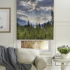 """Sketchy Forest And Vast Cloudy Sky Roller Shade – From """"LightInTheBox"""" on less prices using promo codes and coupon codes."""