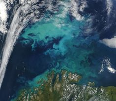 NASA Terra Satellite Moderate Resolution Imaging Spectroradiometer - 1 August 2004 - Phytoplankton bloom in the Barents Sea north of Norway