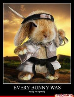 Каждый кролик был на Сирке