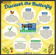 https://livingnongmo.org/2017/02/14/discover-the-butterfly/?utm_medium=email&utm_campaign=Feb%202017%20Butterfly%20Newsletter&utm_content=Feb We are committed to providing non-GMO oils.  Discover the Butterfly.  %202017%20Butterfly%20Newsletter+CID_c8adae0093b64085ee64e7661ac42f9c&utm_source=Campaign%20Monitor