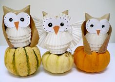 owl themed cupcake holders, a toilet paper roll and a few more common household materials are transformed into great owl decorations for a shower or fall party.