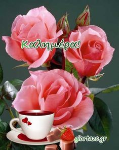 Good Morning Flowers, Good Morning Good Night, Craft Storage, Mom And Dad, Rose, Plants, Eggs, Facebook, Quotes