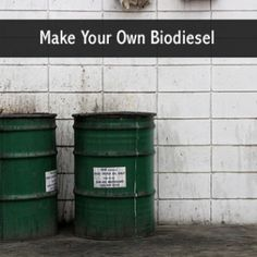 How do you make biodiesel from fish oil?