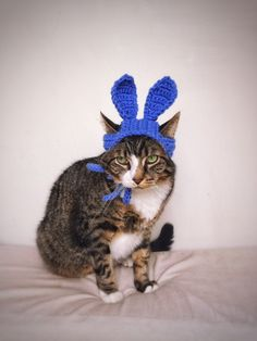 Easter Bunny Hat for Cat Crochet Blue Costume Hat for Cat Unique Handmade Pet Accessories & Cat Dog Costume Hat with Black Pokemon Yellow Crochet Unique ...