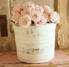 <3 Light Pink Roses
