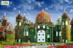 Amazing! RT dubai miracle garden Dubai Miracle Garden: The world's biggest natural flower garden