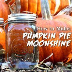How To Make Pumpkin Pie Moonshine. If you like alcohol, if you like pumpkins and if you like fall you will like this pumpkin moonshine recipe. Pumpkin Pie Moonshine Recipe, Homemade Moonshine, Apple Pie Moonshine, Moonshine Still, Flavored Moonshine Recipes, Making Moonshine, Moonshine Whiskey, Mixed Drinks, Fun Drinks