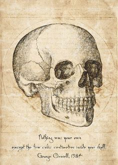 Skull Quote By George Orwell Art Print by hoolst - X-Small Collage Mural, Photo Wall Collage, Room Posters, Poster Wall, Poster Prints, Art Print, Image Deco, Anatomy Art, Aesthetic Art
