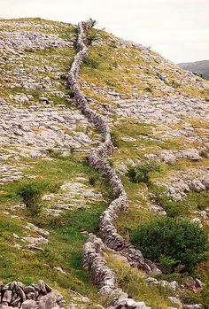 The Burren, County Clare, Ireland.