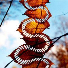 Walter Mason is a Berlin-based artist who creates land art and photographs it. makes me think of Andy Goldsworthy Land Art, Mandala Art, Art Environnemental, Art Et Nature, Nature Artwork, Nature Artists, Ephemeral Art, Organic Art, Inspiration Art