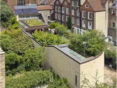 passivhaus - roof garden #greenroof #livingroof #passivhaus