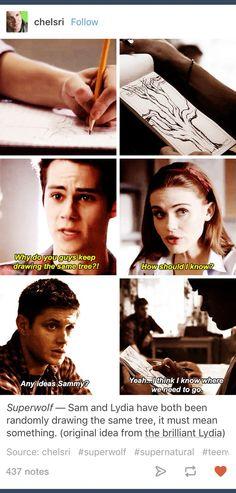 Superwolf; Supernatural; Teen Wolf; crossover; Lydia Martin; Stiles Stilinski; Dean Winchester; Sam Winchester