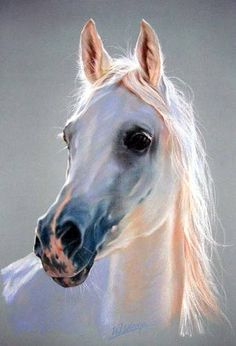 Arabian Horse in JanOW pODLASKI by Karolina13 on DeviantArt. Please also visit www.JustForYouPropheticArt.com for more inspirational art and stories. Thank you so much.