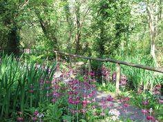 Fairhaven Garden May 2012