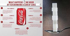 By now, you've likely heard the dangers of drinking soda but have you actually thought about? Like,really, thought about it? The Renegade Pharmacist, a blog run by former UK pharmacist,Niraj Naik complied an infographic that breaks down exactly what happens to your body for an hour after you consume the beverage. First sip to less ...