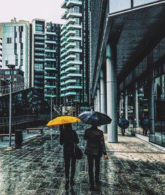 Anche a Milano le nuvole piangono...breve storia triste di Titty e Silvestro  #ig_italia #igersmilano #igworldclub #olloclip #italia365 #moodygrams #spring4igers  #huffpostgram #livefolk #seetoshare #igersitalia #exklusive_shot #freedomthinkers #skrwt #rsa_vsco  #artofvisuals #nothingisordinary #tv_living #wildcoyphotography #AGameofTones #whatitalyis #browsingitaly #seemycity  #igmasters #inlombardia #alwaysgo #BleachMyFilm #rsa_streetview #tv_pointofview