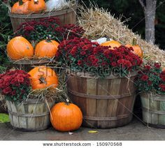 Pumpkin House Stock Photos, Images, & Pictures | Shutterstock