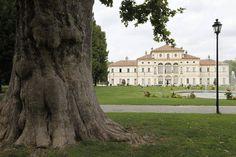 La villa settecentesca nel Parco della Tesoriera . https://www.facebook.com/Sweetalysrl/photos/a.353942320234.352530.150596555234/10154617574800235/?type=1