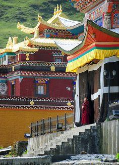 Nyingmapa Sherda College Tibet