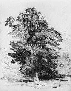Savrasov Aleksey Kondratievich> Sosny Maximum size 1115 x 1432 px, KB See graphics Tree Drawings Pencil, Landscape Pencil Drawings, Landscape Sketch, Landscape Art, Landscape Paintings, Nature Sketch, Nature Drawing, Realistic Drawings, Easy Drawings