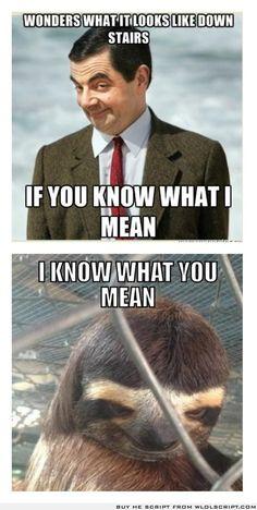 Sloth knows