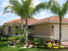 best front yard landscape design ideas with palm tree
