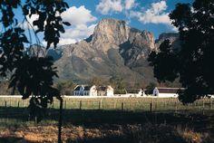 Boschendal Wine Farm- 20 minutes from Franschhoek, home of La Clé des Montagnes- 4 luxurious villas on a working wine farm