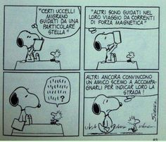 Snoopy e Woodstock Woodstock, Peanuts Snoopy, Peanuts Comics, Italian Humor, Snoopy Love, Charlie Brown, Cool Stuff, My Love, Friends