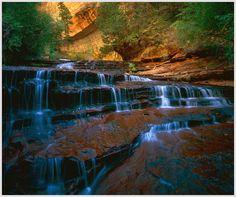 cascades along north creek, zion national park, utah