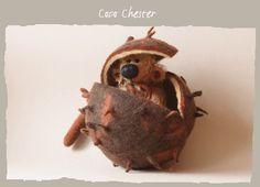 Teddy Bear Coco Chester
