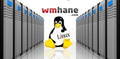 Linux Hosting , hosting hizmeti vermesi için sunucularda Linux altyapısı ile internet sitesi barındırma sistemidir.