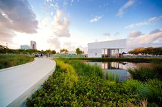 Southport Broadwater Parklands by AECOM Design and Planning 05 photo Richard Pearse « Landscape Architecture Works | Landezine