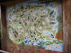 O que você vai encontrar no Parque da Aves.