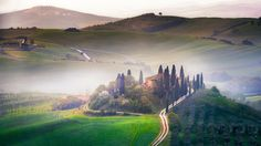 Belvedere II - Sunrise over one of the most iconic places in Tuscany, San Quirico, Val d'Orcia, Toscana, Italia