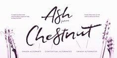 Ash™ - Webfont & Desktop font « MyFonts