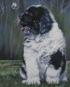 landseer Newfoundland art print CANVAS print of LA Shepard dog painting 8x10. $19.99, via Etsy.