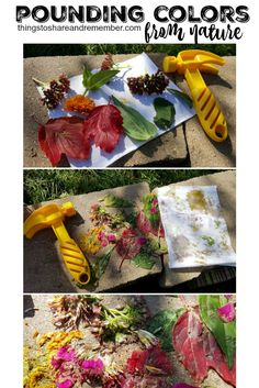 Pounding Colors from Nature #MGTblogger:
