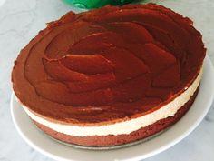 Paleo choc cake