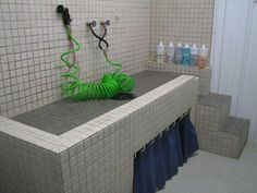 dog wash station / bath