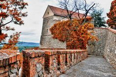 The Castle of Bratislava - fall time' s coming Bratislava Slovakia, Central Europe, Capital City, Slovenia, Nature Pictures, Homeland, Hungary, Places Ive Been, Sidewalk