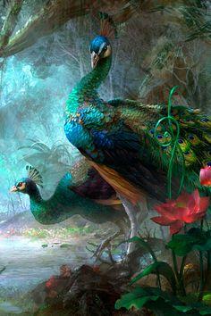 Peacock Wallpaper, Animal Wallpaper, Lotus Wallpaper, Wallpaper Maker, Wallpaper Desktop, Black Wallpaper, Indian Art Paintings, Animal Paintings, Rare Animals