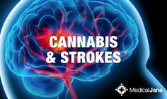 A meta-analysis of studies shows the amount of the brain injured from a stroke was reduced in subjects that had used cannabinoid therapies.